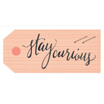 stay curious tag