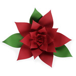 festive poinsettia flower