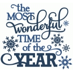 most wonderful time of the year - vinyl phrase