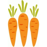 fresh vegetable - carrot
