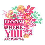 bloom where you are planted word art