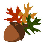 acorn with oak leaves
