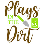 plays in the dirt
