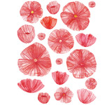 watercolor poppies stickers