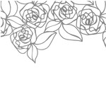 lace overlay - rose border