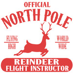 north pole reindeer flight instructor